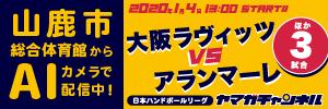日本ハンドボールリーグ